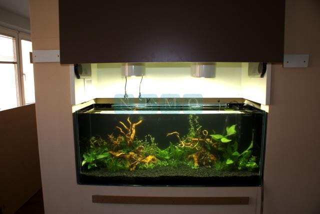 Akwarium w sali konferencyjnej (4)