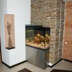 Akwarium w zabudowie (3)