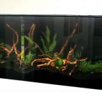 Nowoczesne akwarium w zabudowie 4
