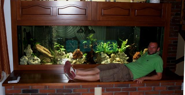 Wielkoformatowe akwarium Tanganika (2)
